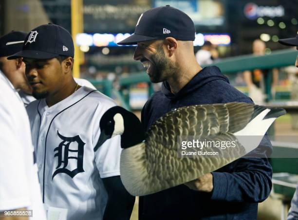 Pitcher Mike Fiers of the Detroit Tigers walks off with the rally goose a goose decoy following a 52 win over the Toronto Blue Jays at Comerica Park...