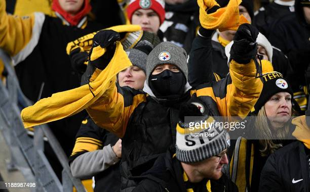 Pittsburgh Steelers fan cheers in the fourth quarter during the game against the Buffalo Bills at Heinz Field on December 15, 2019 in Pittsburgh,...