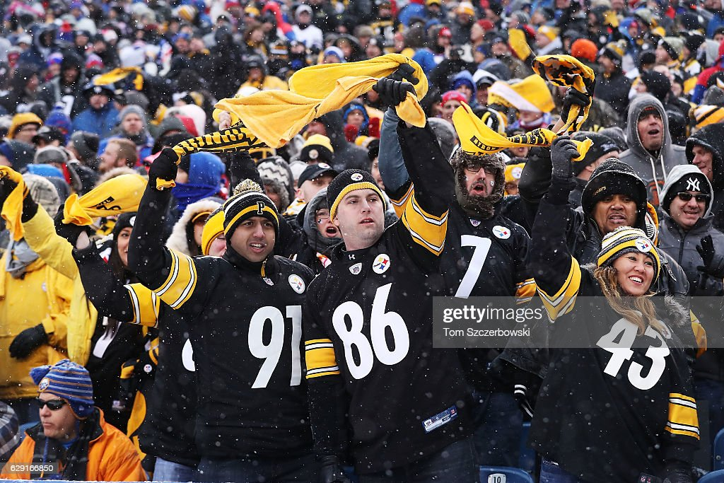Pittsburgh Steelers fans celebrate during the second half against the Buffalo Bills at New Era Field on December 11, 2016 in Orchard Park, New York.