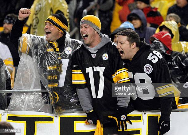 Pittsburgh Steelers fans cheer against the Kansas City Chiefs during the game on November 12 2012 at Heinz Field in Pittsburgh Pennsylvania