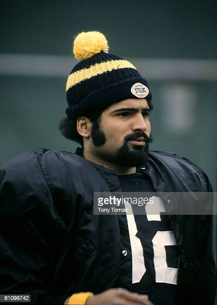Pittsburgh Steelers Hall of Fame running back Franco Harris during a 23-10 victory over the Minnesota Vikings on November 26 at Three Rivers Stadium...