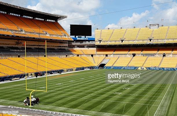Pittsburgh Steelers playing field inside Heinz Field, home of the Pittsburgh Steelers and Pittsburgh Panthers football teams in Pittsburgh,...