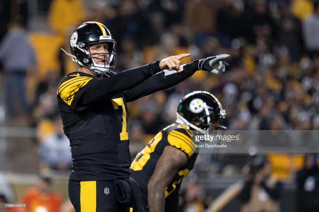 NFL: NOV 08 Panthers at Steelers : News Photo