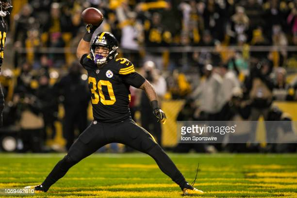 Pittsburgh Steelers running back James Conner spikes the ball after a touchdown during the NFL football game between the Carolina Panthers and the...