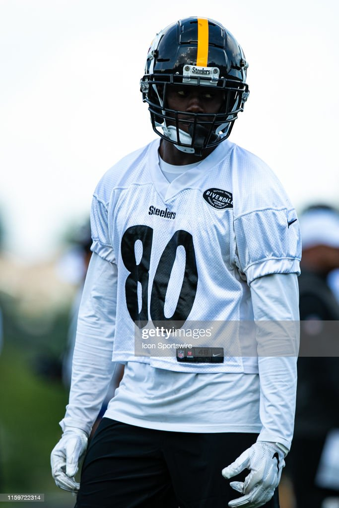 separation shoes a7744 1c456 Pittsburgh Steelers wide receiver Johnny Holton looks on ...
