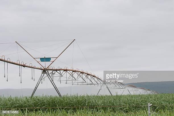 Pivot irrigation machine in sugarcane fields. Mpumulanga, South Africa.