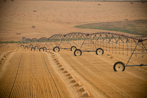 Pivot irrigation system sits in wheat field - gettyimageskorea