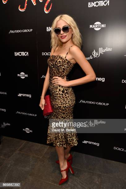 Pixie Lott attends the Dolce Gabbana Italian Christmas after party at Harrods on November 2 2017 in London England