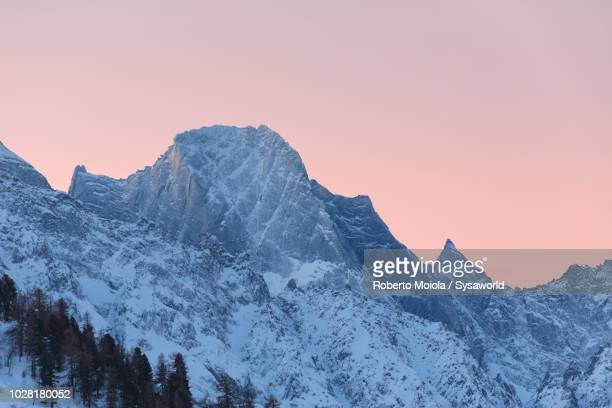 pizzo badile at sunrise, maloja, bregaglia - pine woodland stock pictures, royalty-free photos & images