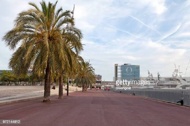pla de miquel tarradell in barcelona - gwengoat stock pictures, royalty-free photos & images