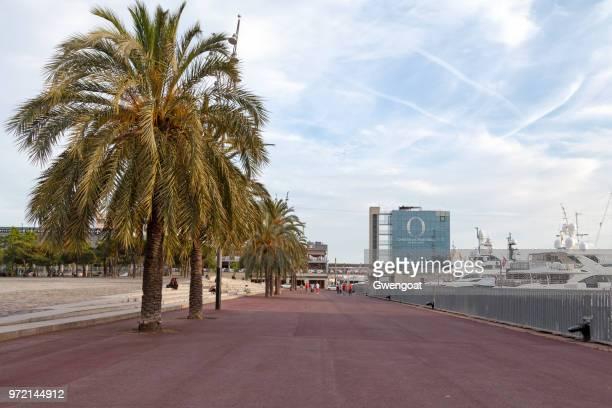 pla de miquel tarradell in barcelona - gwengoat foto e immagini stock