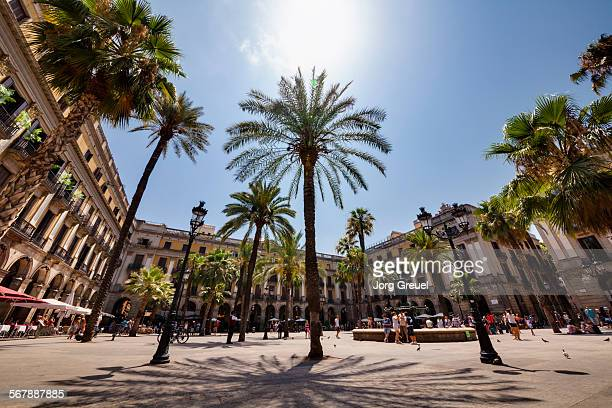 placa reial - barcelona stock pictures, royalty-free photos & images