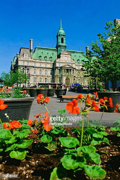 place jacques cartier and city hall, old montreal, quebec, canada - place jacques cartier stock pictures, royalty-free photos & images