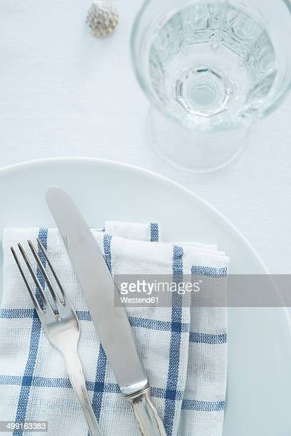 Place setting and glass of water, partial view