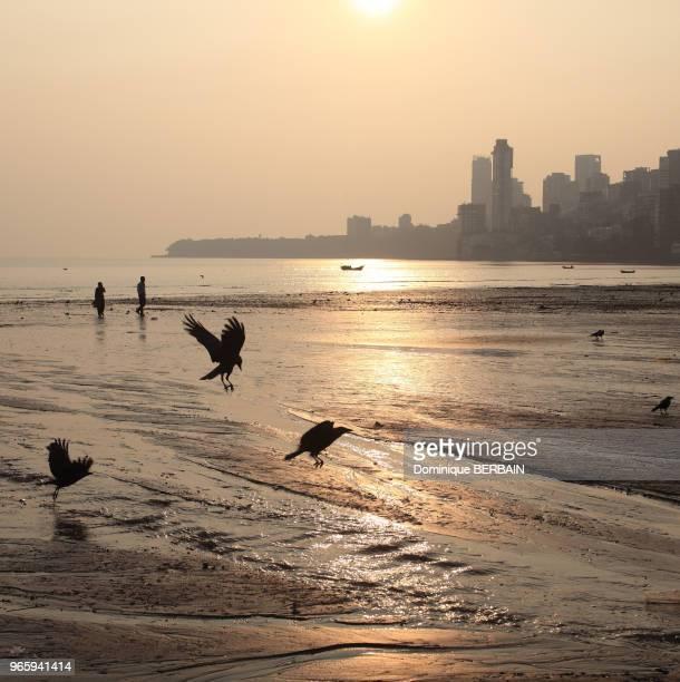 Plage de Chowpatty au centre de Bombay Couché de soleil Inde