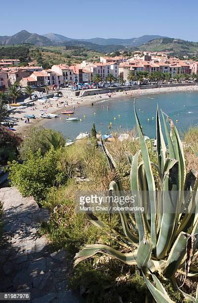 plage de port d'avall, beach, collioure, pyrenees-orientales, languedoc, france, europe - collioure photos et images de collection