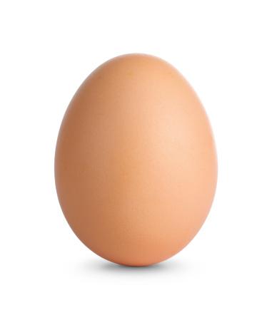 Plain brown egg standing on white surface 177444800