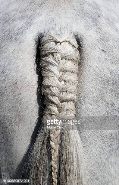 Plaited horse tail, detail