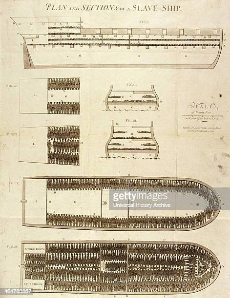 Plan of Sections of Slave Ship