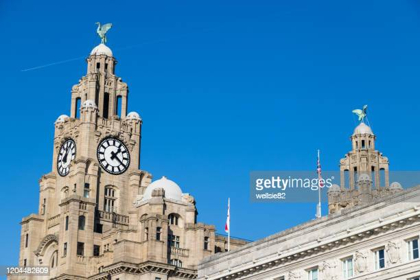 plane overflies the liverbirds - waterfront stock pictures, royalty-free photos & images