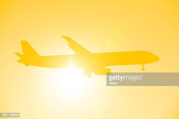 Plane ready to land in evening