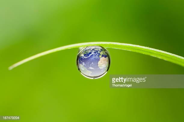 Planet earth.  Dop Nature Environment Water Globe Leaf waterdrop