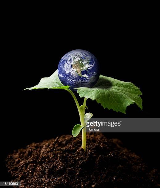 planet earth - carbon dioxide bildbanksfoton och bilder