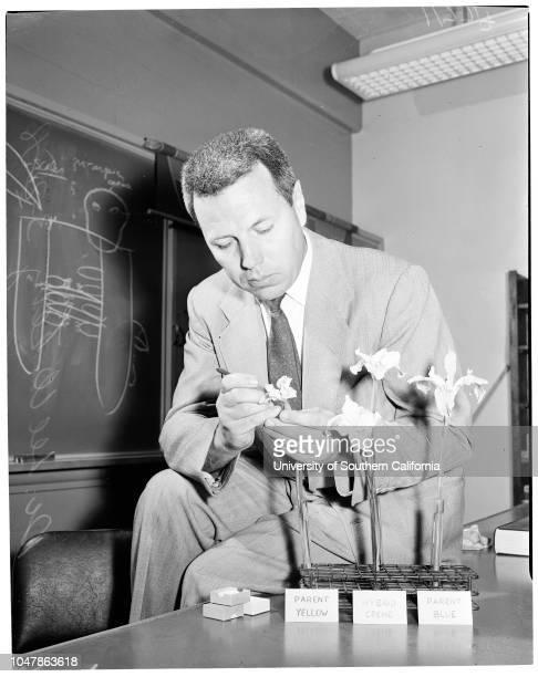 Plant breeding at Rancho Santa Ana Botanical Garden at Claremont, 28 March 1956. Doctor Lee W Lenz )Geneticist-Plant breeder).;Caption slip reads: :...