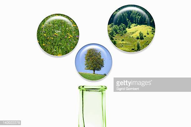 plant bubbles over glass bottle - sigrid gombert stock pictures, royalty-free photos & images
