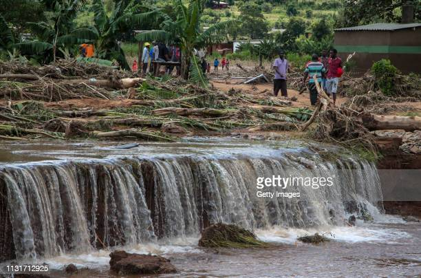 Plant debris lays strewn in an area flooded days earlier by Cyclone Idai, on March 20, 2019 in Chipinge, Zimbabwe. Zimbabwean authorities have said...
