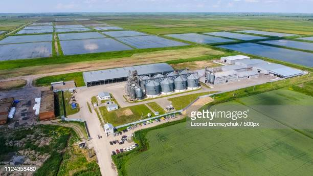 plant for the drying and storage of grain - industrial storage bins stock pictures, royalty-free photos & images