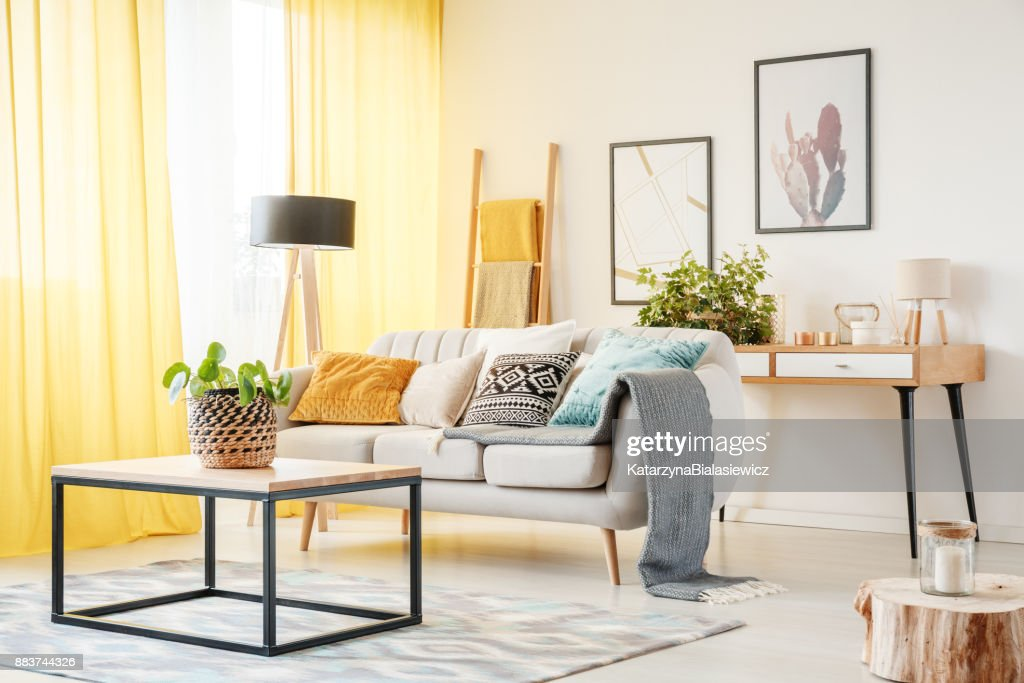Plant in warm living room : Stock Photo