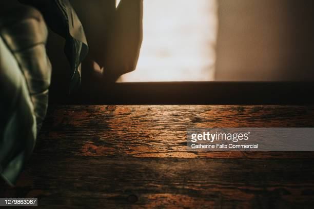 plant on a stylish rustic wooden table creating a shadow around a sunbeam - shadow stock pictures, royalty-free photos & images