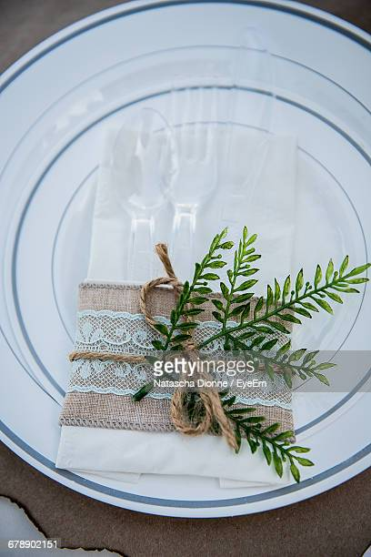 plant with tablecloth and plastic eating utensils in plate - plastic plate stock pictures, royalty-free photos & images