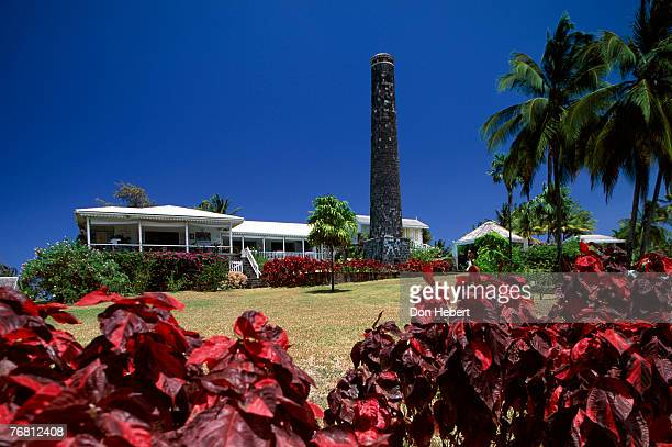 plantation - st. kitts stock photos and pictures