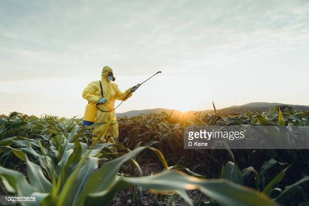 plantation spraying - genetic modification stock pictures, royalty-free photos & images