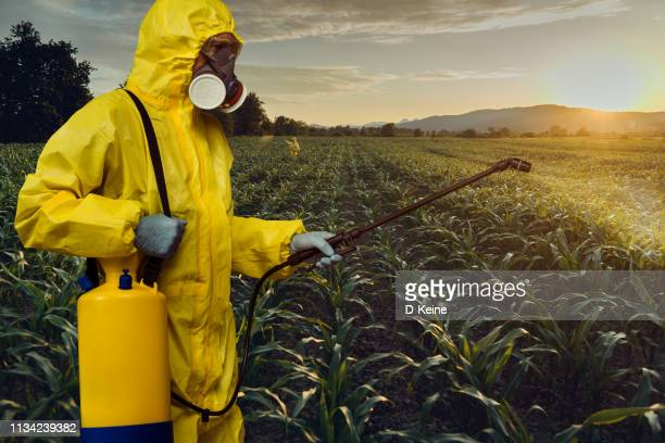 plantation spraying - insecticide stock pictures, royalty-free photos & images