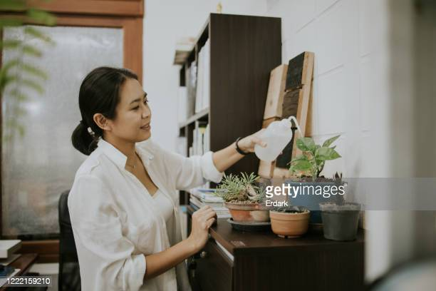 planter women with her hobby in small home office - watering stock pictures, royalty-free photos & images