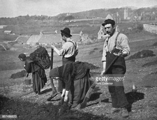 Planting potatoes in Skye Scotland 1912 From The Living Races of Mankind Vol II [Hutchinson Co London 1912] Artist GW Wilson