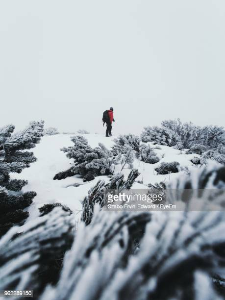 Plants Against Man Walking On Snow Covered Field