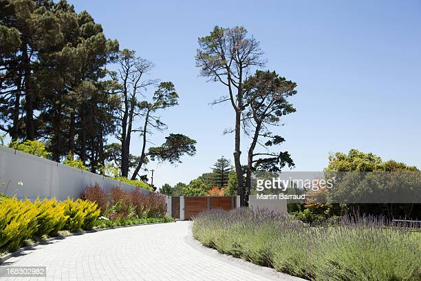 plants along cobblestone driveway - driveway stock pictures, royalty-free photos & images