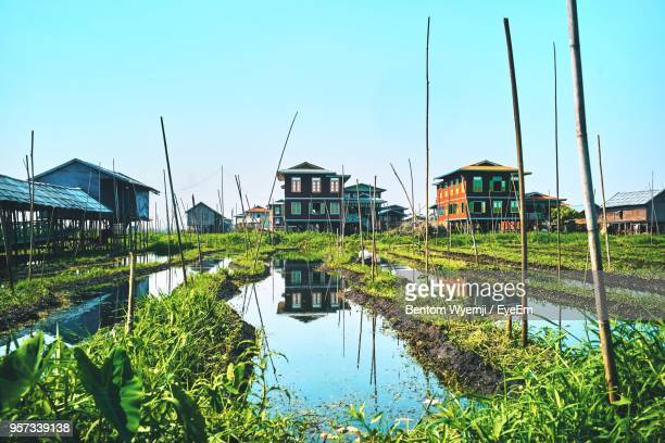 plants and buildings against clear sky - inle lake stock pictures, royalty-free photos & images