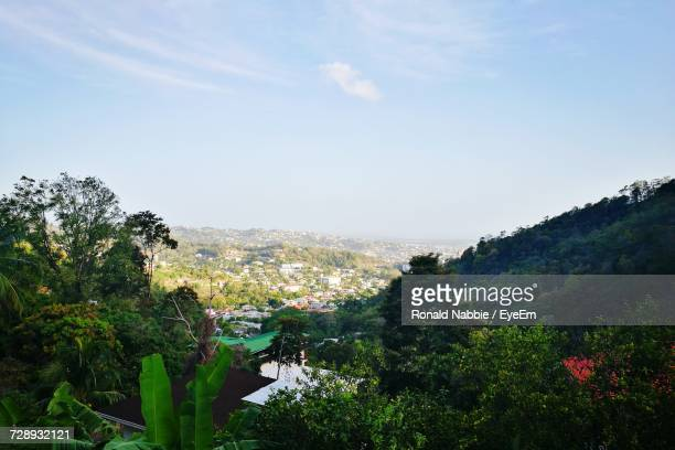 plants and trees against sky - port of spain stock photos and pictures