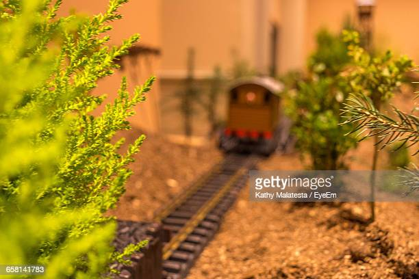 Plants By Toy Train