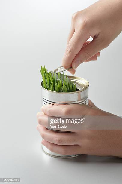 Plants canned full
