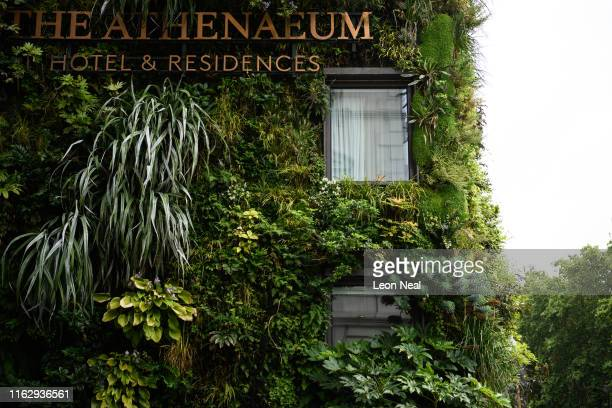 Plants grow on the living wall at The Athenaeum hotel on July 19 2019 in London England On July 22 London will officially become the world's first...