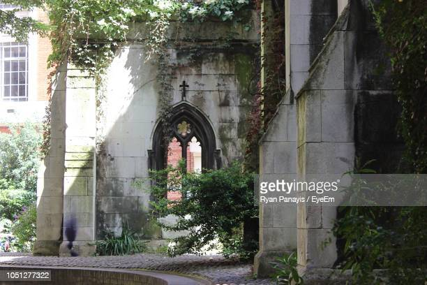 plants growing at abandoned building - run down stock pictures, royalty-free photos & images