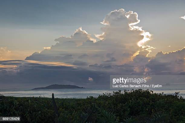 plants growing by sea against sky during sunset - filho stock pictures, royalty-free photos & images