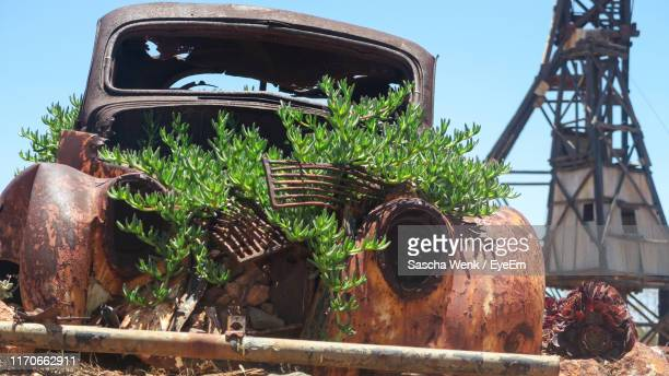 plants growing in old rusty car against sky - obsolete stock pictures, royalty-free photos & images