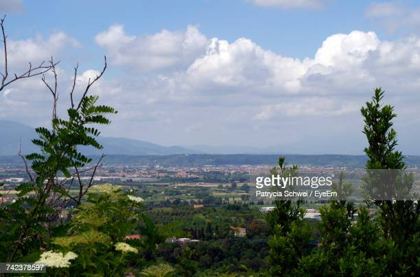 plants growing on landscape against sky - san miniato stock pictures, royalty-free photos & images